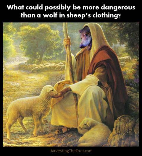 Shepherd-in-sheeps-clothing1